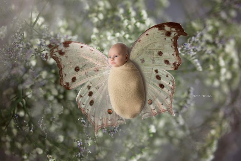 sesiones de fotos recién nacido
